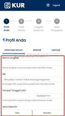 pinjaman bri online