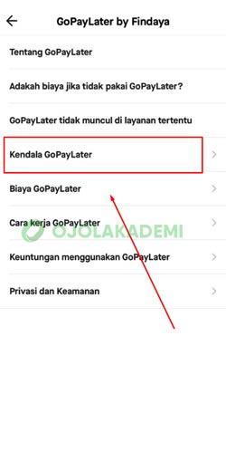 5 Tap Kendala Paylater